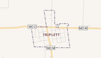 Triplett, Missouri map