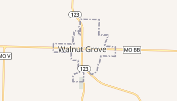 Walnut Grove, Missouri map