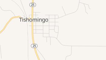 Tishomingo, Mississippi map