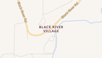 Black River Village, New Mexico map