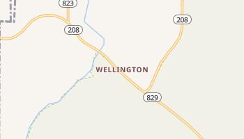 Wellington, Nevada map