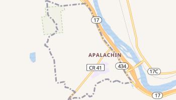 Apalachin, New York map