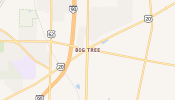 Big Tree, New York map