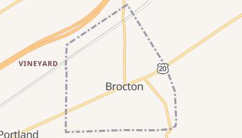 Brocton, New York map