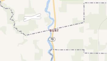Burt, New York map
