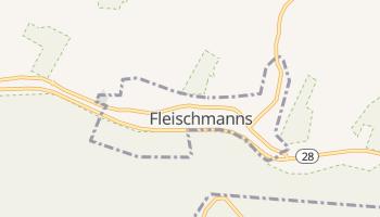 Fleischmanns, New York map