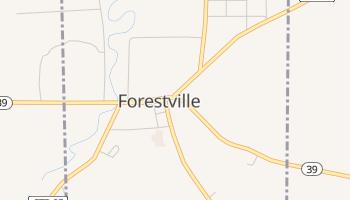 Forestville, New York map