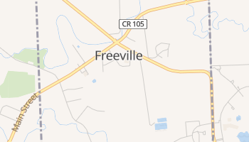 Freeville, New York map