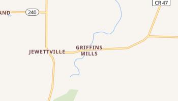 Griffins Mills, New York map