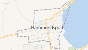 Hammondsport, New York map