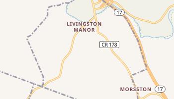 Livingston Manor, New York map