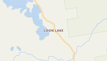 Loon Lake, New York map