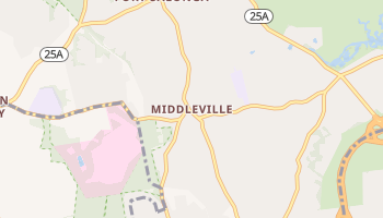 Middleville, New York map
