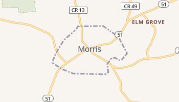 Morris, New York map