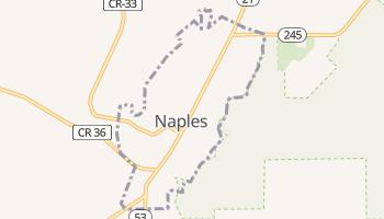 Naples, New York map