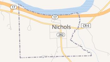 Nichols, New York map
