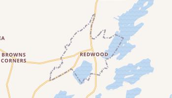 Redwood, New York map