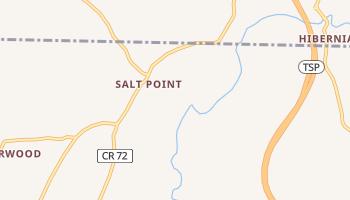 Salt Point, New York map