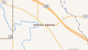Spring Brook, New York map