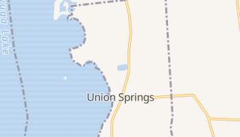 Union Springs, New York map
