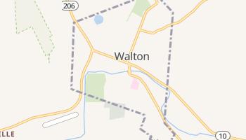 Walton, New York map