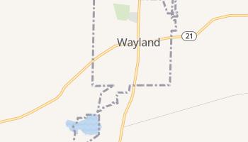 Wayland, New York map