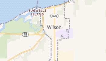 Wilson, New York map