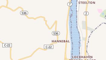Hannibal, Ohio map