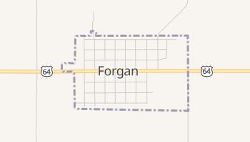 Forgan, Oklahoma map