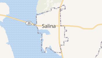 Salina, Oklahoma map