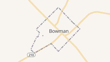 Bowman, South Carolina map