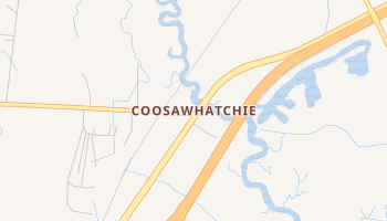 Coosawhatchie, South Carolina map