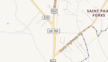 Homewood, South Carolina map