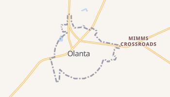 Olanta, South Carolina map