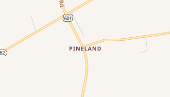 Pineland, South Carolina map