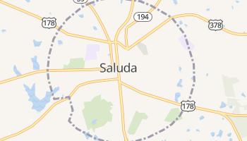 Saluda, South Carolina map