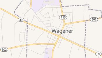 Wagener, South Carolina map