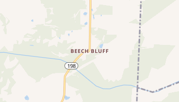 Beech Bluff, Tennessee map