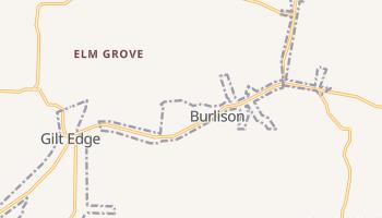 Burlison, Tennessee map