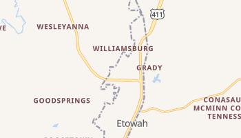 Etowah, Tennessee map