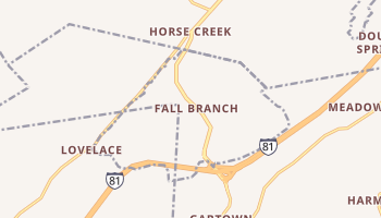 Fall Branch, Tennessee map
