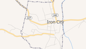 Iron City, Tennessee map