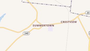 Summertown, Tennessee map