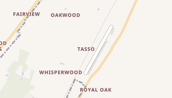 Tasso, Tennessee map