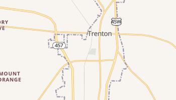 Trenton, Tennessee map