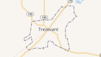 Trezevant, Tennessee map