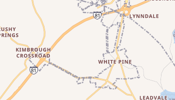 White Pine, Tennessee map