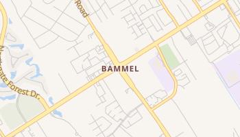 Bammel, Texas map