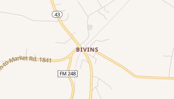 Bivins, Texas map