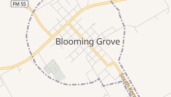 Blooming Grove, Texas map